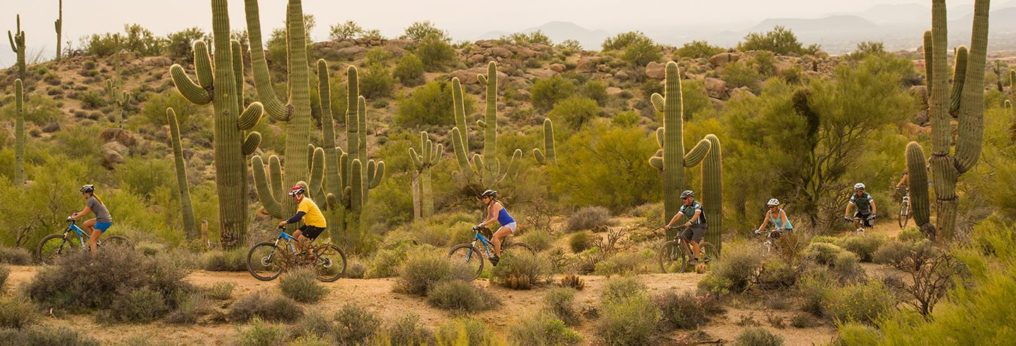 Mountain Bike Tucson's Best Trails