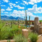 Best Tucson Mountain Bike Trails