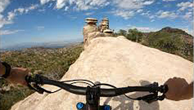 Mountain biking Mount Lemmon
