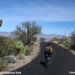 When To Go Cycling and Traveling In Tucson, Arizona?