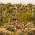 Tucson's Best Beginner Mountain Bike Trails